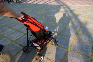#1 mode of transportation - the stroller