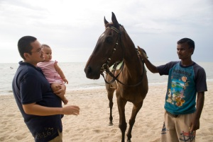 patting the horse.. along the beach